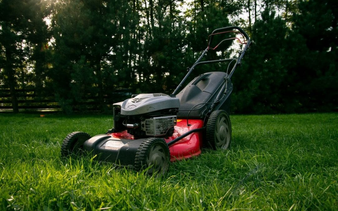 summer lawn care involves mower maintenance